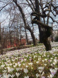 Visit Zagreb parks