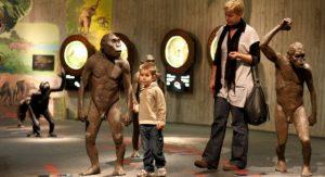 Krapina Neandertaler Museum