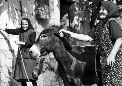 Ein Motiv aus der Vergangenheit Dalmatiens