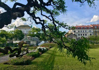 Zagreb Walk and Drive